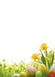 Designpapier-203 DIN-A4 (100 Blatt) Ostern