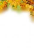 Designpapier-214 DIN-A4 (100 Blatt)  Herbst
